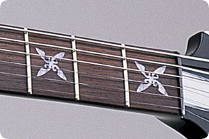 ESP Ninja V Close-up