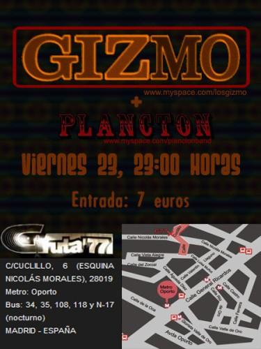 Gizmo en Gruta 77